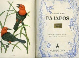 william wiliiams sonata in imitation of birds